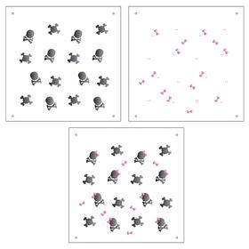 14X14-Duplo-Micro-Caveiras-Laco-OPA1171-Colorido