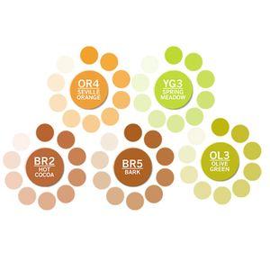 chameleon-color-tones-ct0503-tons