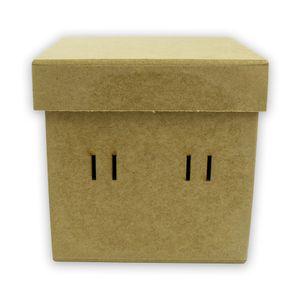 caixa-PF-P---1