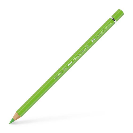 117671_Watercolour-pencil-Albrecht-Durer-light-green_PM99-diagonal-view_Office_21951