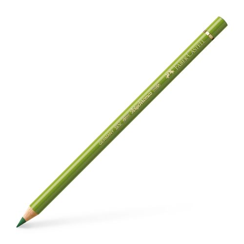 110168_Colour-Pencil-Polychromos-earth-green-yellowish_Office_21651