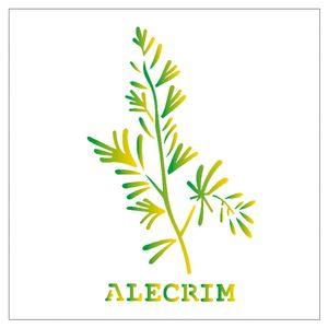 14x14-Simples-Tempero-Alecrim-OPA2007-Colorido