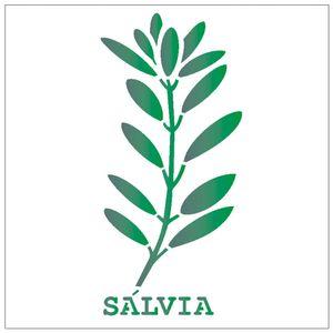 14x14-Simples-Tempero-Salvia-OPA2022-Colorido