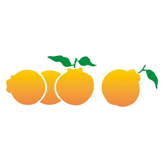 10x30-Simples-Frutas-Ponkan-OPA1875-Colorido