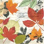 Guardanapo-para-Decoupage-Toke-e-Crie-GUA200187-19607--Outono-Manuscrito