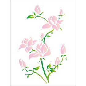32x42--Simples-Flores-Magnolias-OPA1270-Colorido