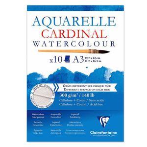 Bloco-aquarelle-Cardinal-watercolour-A3