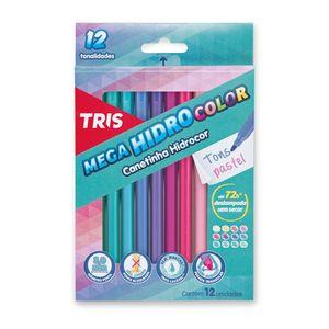hidrocor-pastel-com-12-cores-177091