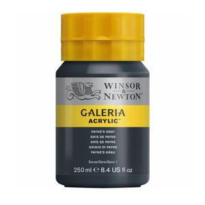 Tinta-Acrilica-Galeria-Winsor---Newton-250-ml–465-paynes-gray