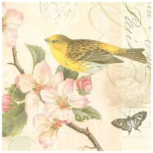 guardanapo-para-decoupage-bird-and-blossom-ambiente-107953_1