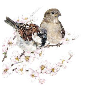 guardanapo-para-decoupage-sparrows-blossom-179508_1