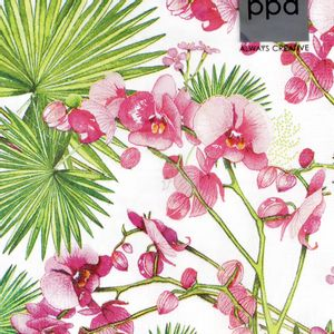 Guardanapo_para_Decoupage_Paperdesign_com_20_Unidades_orchids-e-palms-1332714