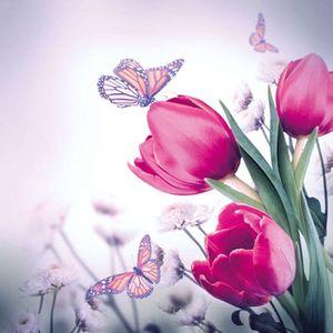 Guardanapo-para-Decoupage-Ambiente-com-20-Unidades-Butterfly-e-Tulips-13309265
