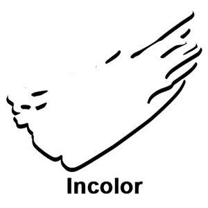 cor-Incolor-78273