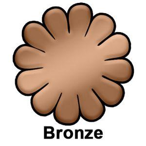 Bronze-9498